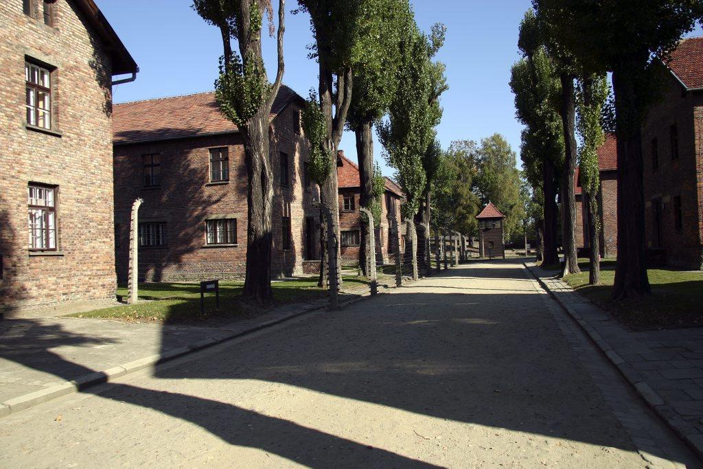 http://www.tunliweb.no/Bilder_SM/_album_Auschwitz/IMG_8392_1024pixel.jpg