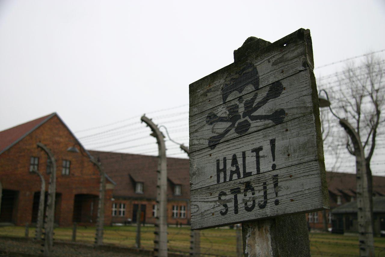 http://www.tunliweb.no/Bilder_SM/_album_Auschwitz/last-picture.jpg